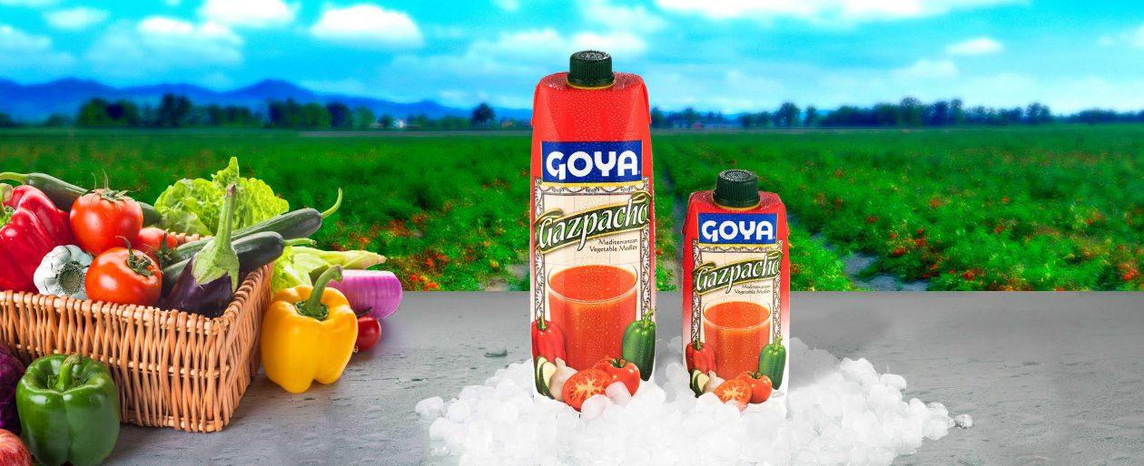 Gazpacho Goya Spain