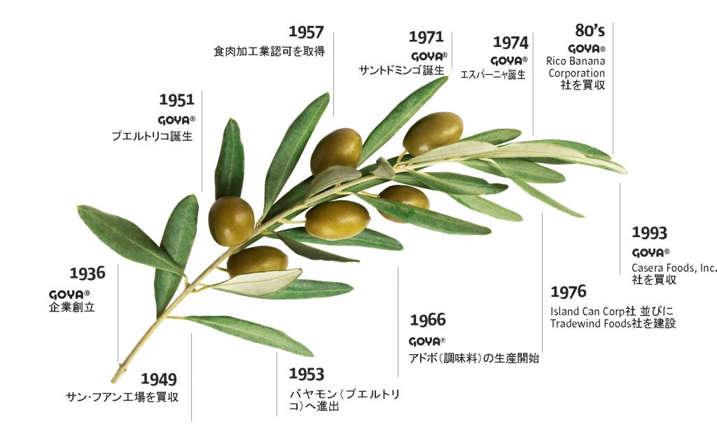 historia goya grafica_jp