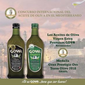 Premios Terra Olivo
