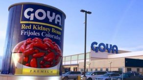 Goya Houston. BBC News