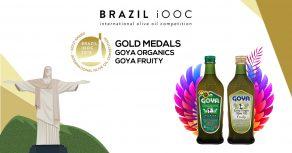 Medallas oro Brasil iooc 2019