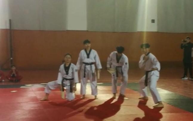 Korean national artistic Taekwondo team