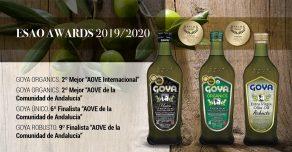 Premios ESAO - ESAO Awards