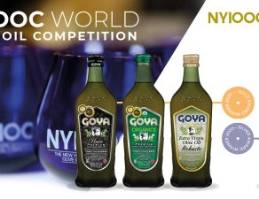 NYIOOC 2020 Competition | Concurso NYIOOC 2020