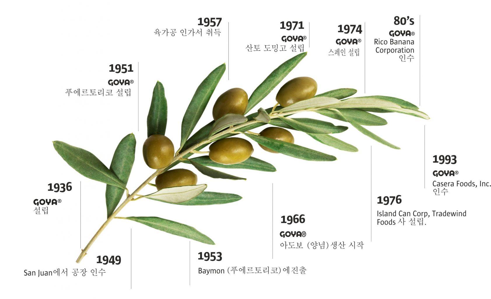 History Goya Korean